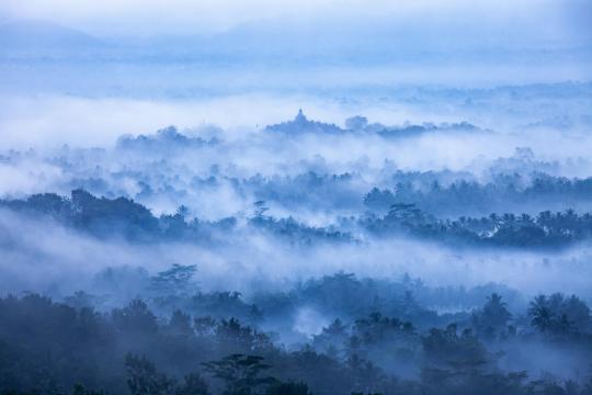 清晨雾气腾腾的自然美景